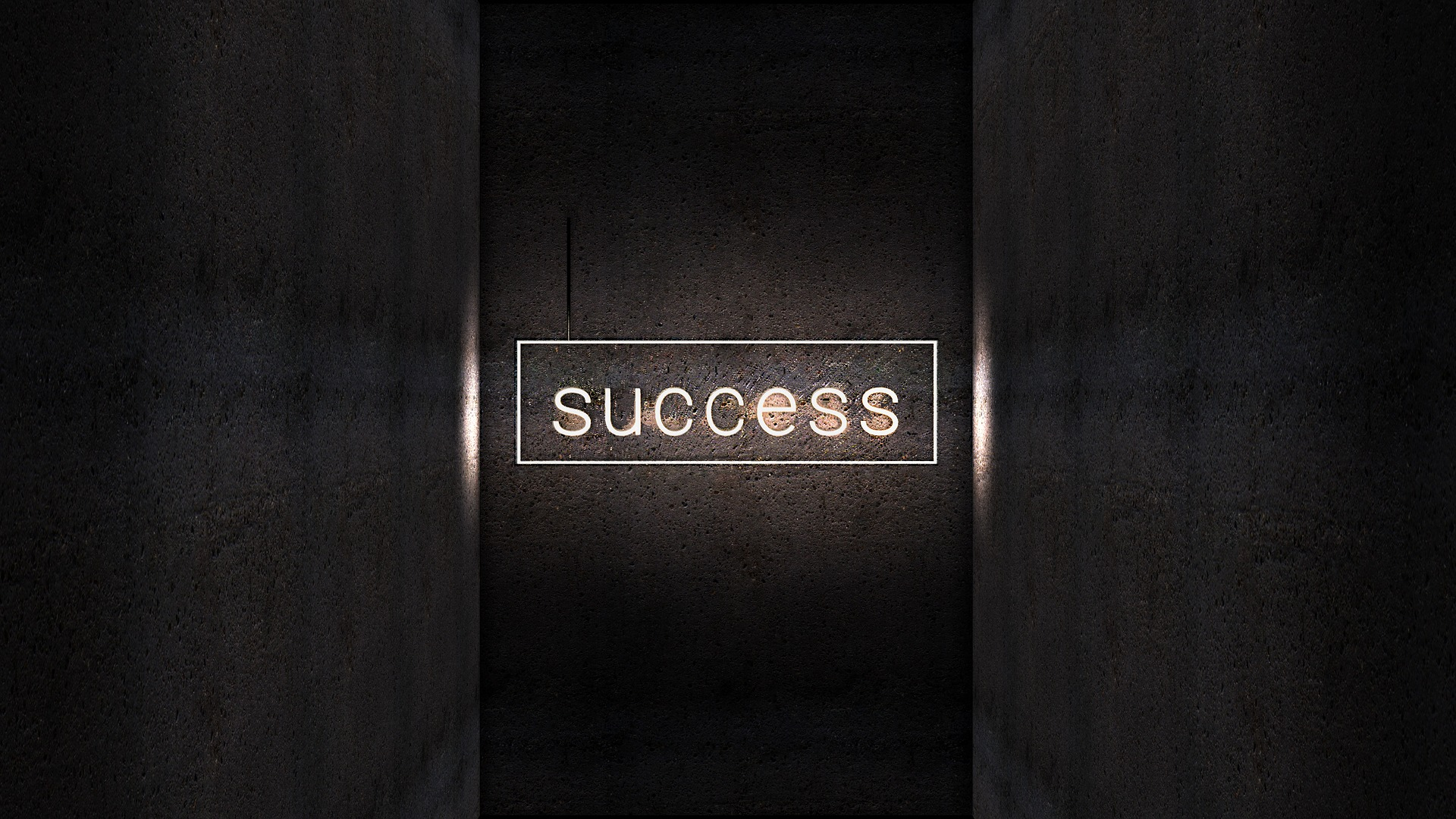sukces ZAPPA